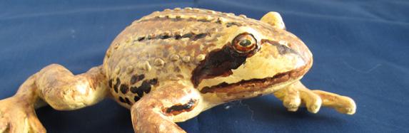 Paper Mache Clay Frog