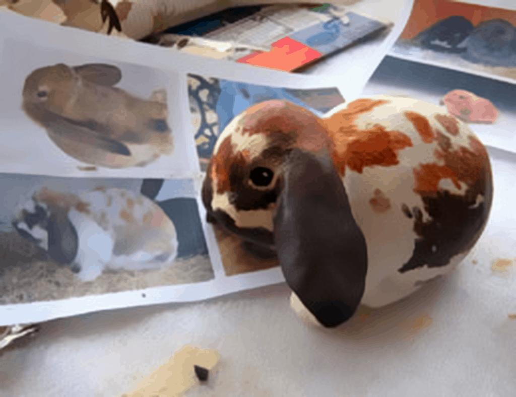 Paper Mache Lop-Eared Rabbit, painting 1