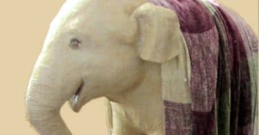 Life Sized Paper Mache Baby Elephant