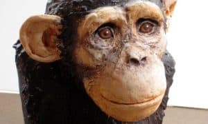 Paper Mache Chimpanzee Bust