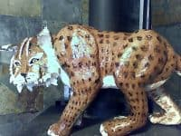Paper Mache Bobcat by Ron Gordon