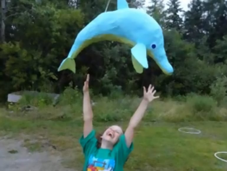 dolphin pinata video