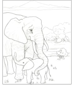 Free Download The Endangered Animals Coloring Book Ultimate