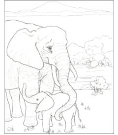free download the endangered animals coloring book ultimate paper mache. Black Bedroom Furniture Sets. Home Design Ideas