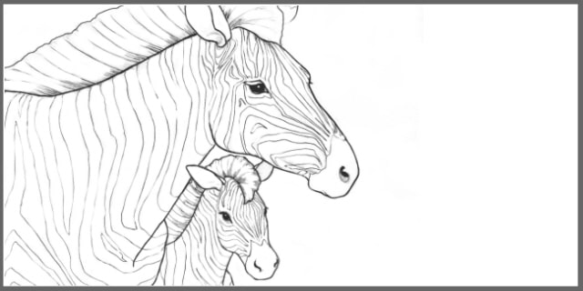 Free Coloring Pages The Endangered Animals Color And Learn Ebook