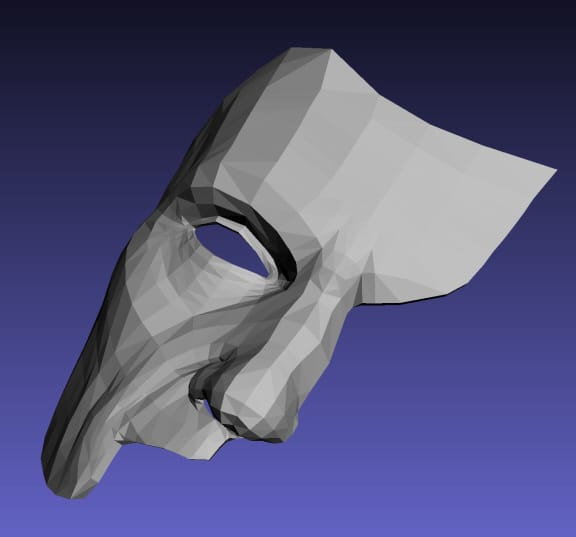 Paper Mache Masks Made with a 3-D Computer Program and Negative