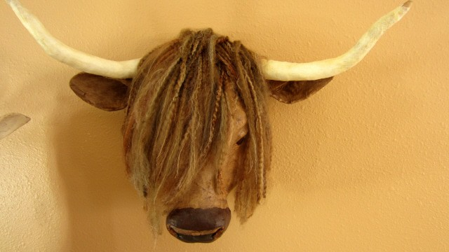 Highland Cow Faux Taxidermy Mount Ultimate Paper Mache