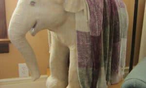 Jonni's Elephant