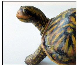 Air Dry Clay Box Turtle