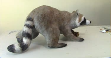 Pattern for a Paper Mache Raccoon