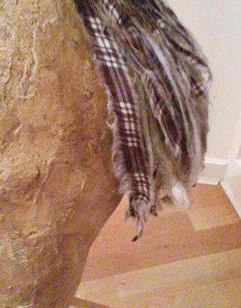 Reindeer tail