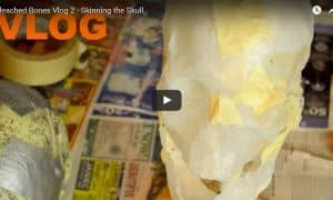haunted yard display vlog