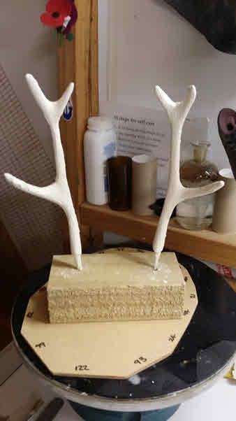 Jackalope Antlers, Step 4