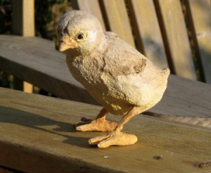 Baby Chick with Paper Mache Clay