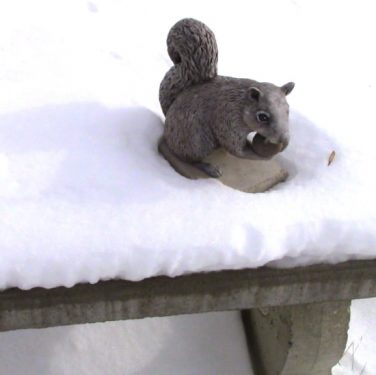 Epoxy Clay Outdoor Squirrel Sculpture After It's Been Painted