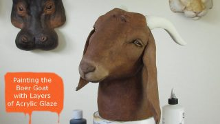 Boer Goat Painted with Layers of Acrylic Glaze