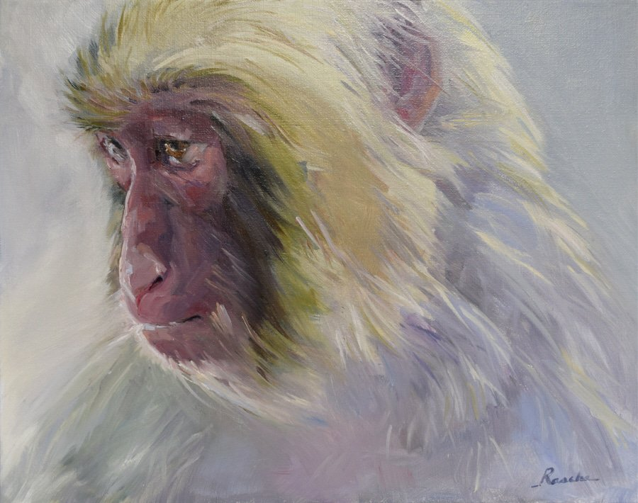 "Oil Painting of a Japanese Snow Monkey - titled ""Daydream"" - by Jessie Rasche."