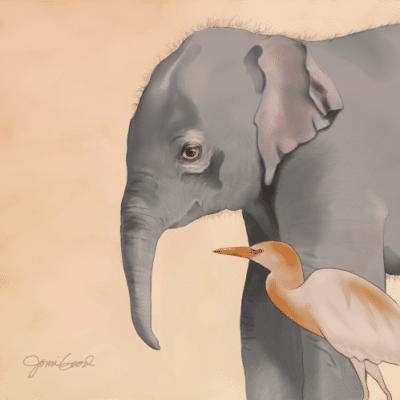Baby Indian Elephant Print