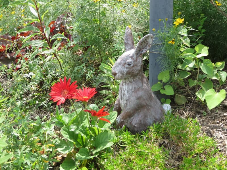 Another view of Eileen's Pal Tiya Rabbit