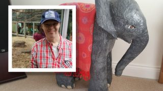 Elephant for Andrew,by Jane Lewis
