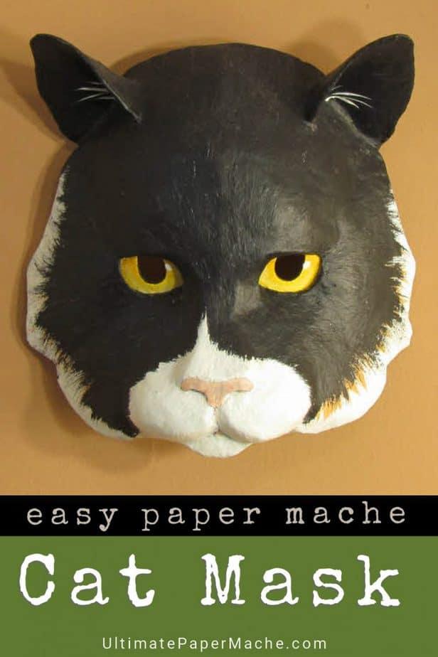 DIY paper mache cat mask