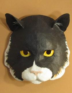 cat mask pattern
