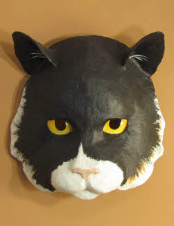 cat mask pattern