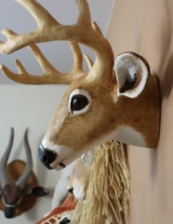 diy deer head side view