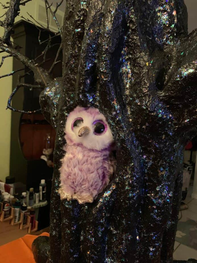 Owl living in the Haunted Tree