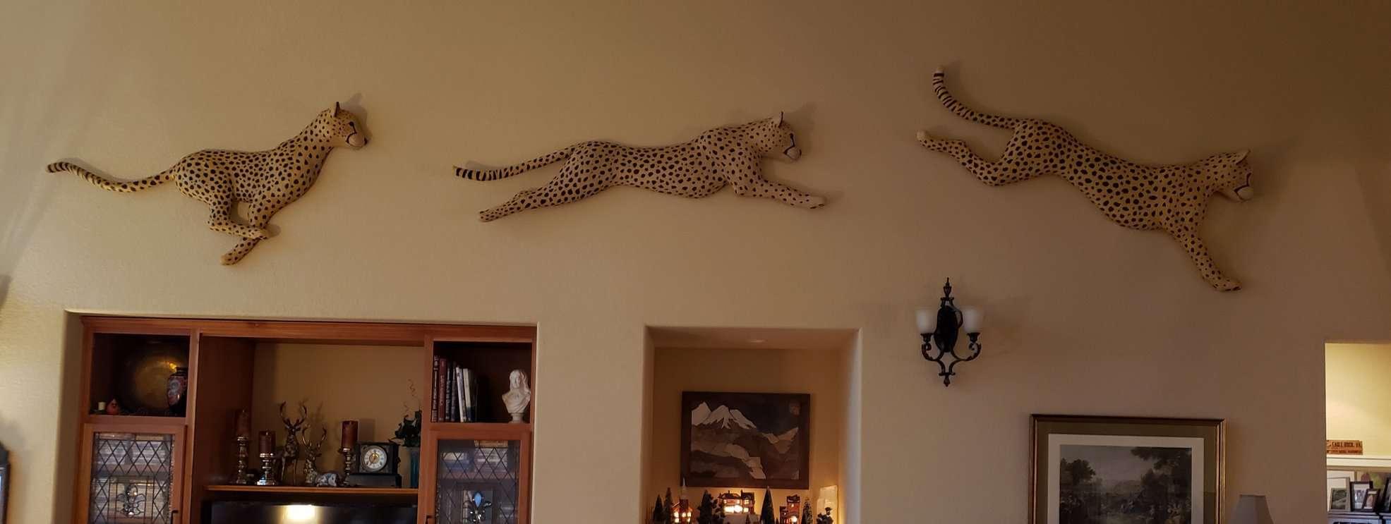 Running Cheetah's