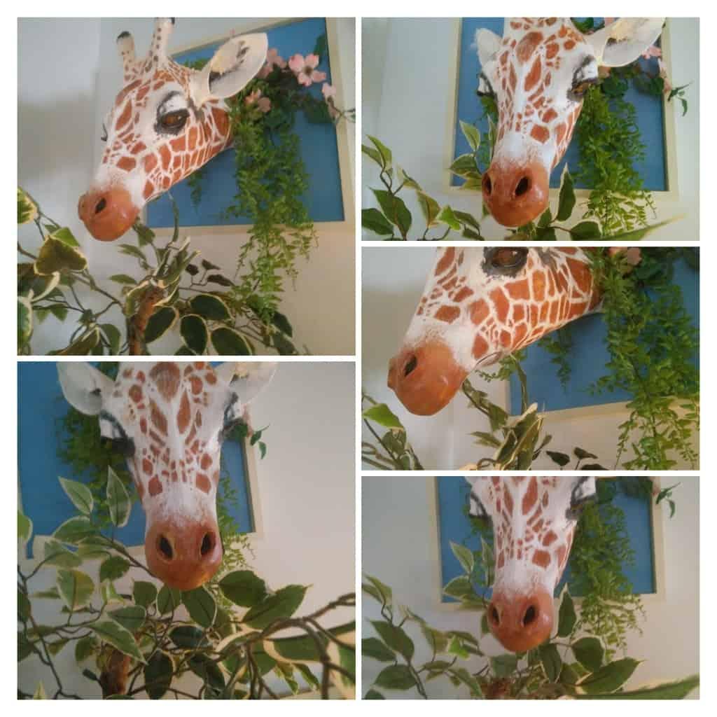 Gerold the paper mache giraffe