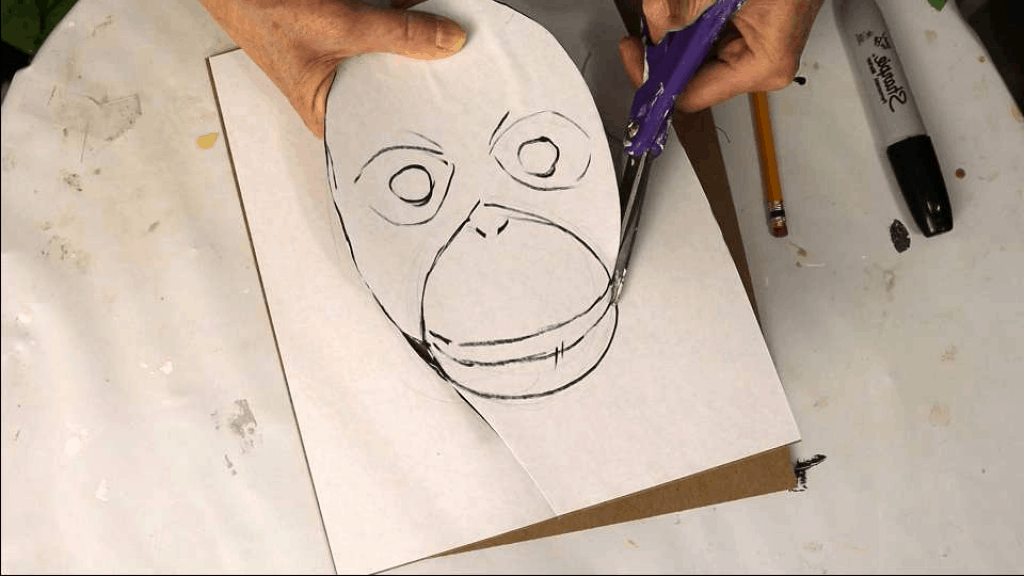 Draw the outlines of the baby orangutan