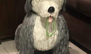 Shaggy Dog Paper Mache Sculpture