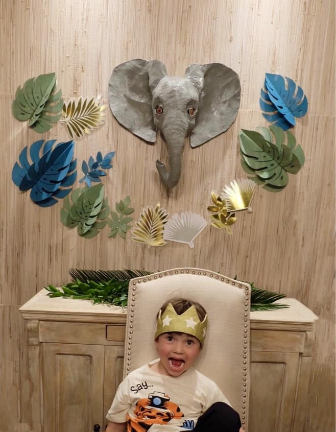 Safari Jungle Birthday Party Theme