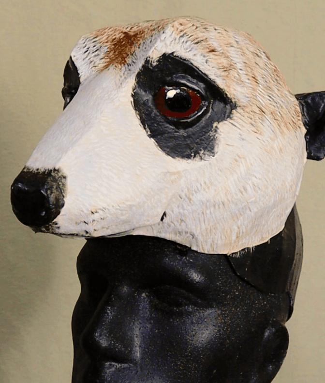 Timon Mask Pattern