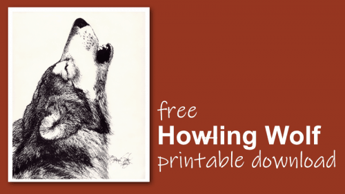 Free Printable Howling Wolf Drawing