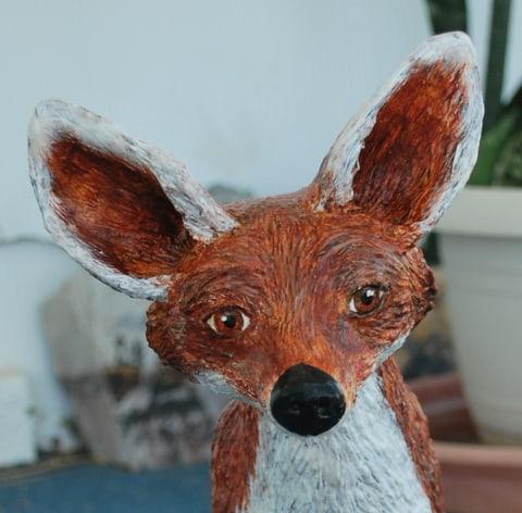 Fox Head Close-U[