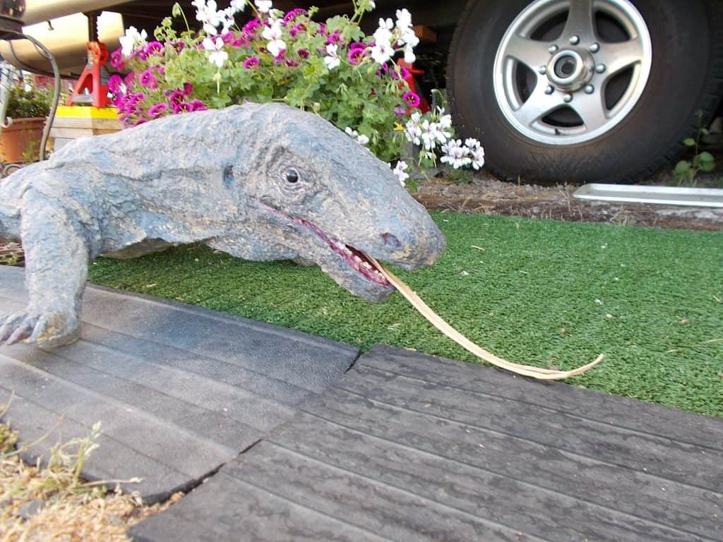 Komodo Dragon Sculpture's Face