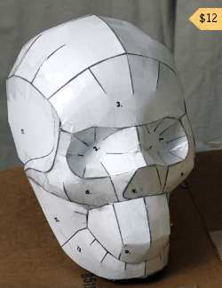 Skull-Shaped Sculpting Form