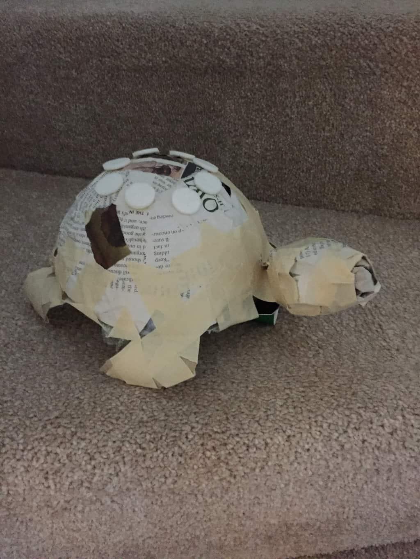 Armature for paper mache turtle