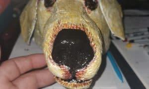 Merlin the Dog, Portrait mask