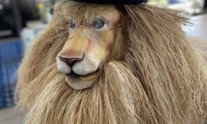 Dandy Lion mask
