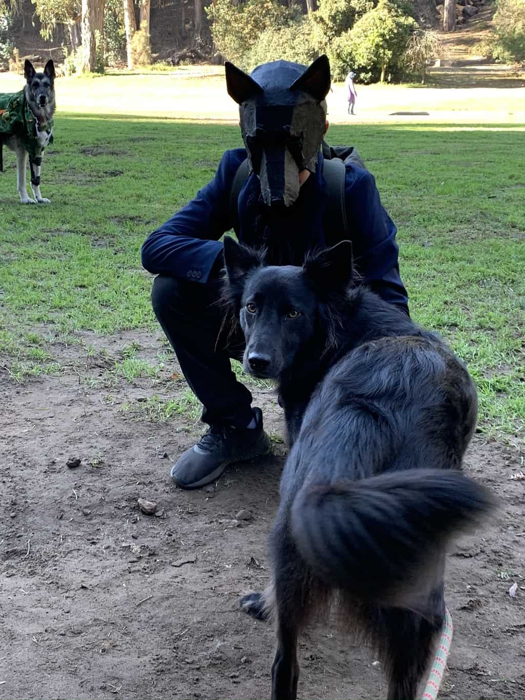 Black dog costume with paper mache mask