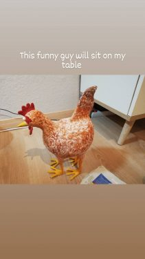 Crazy Four-Legged Chicken