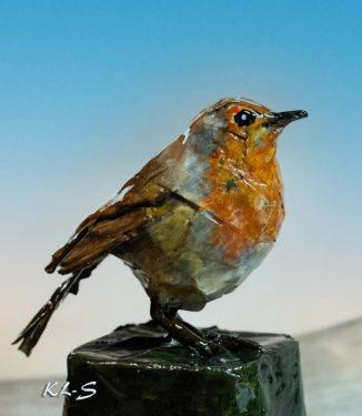 Little Robin bird