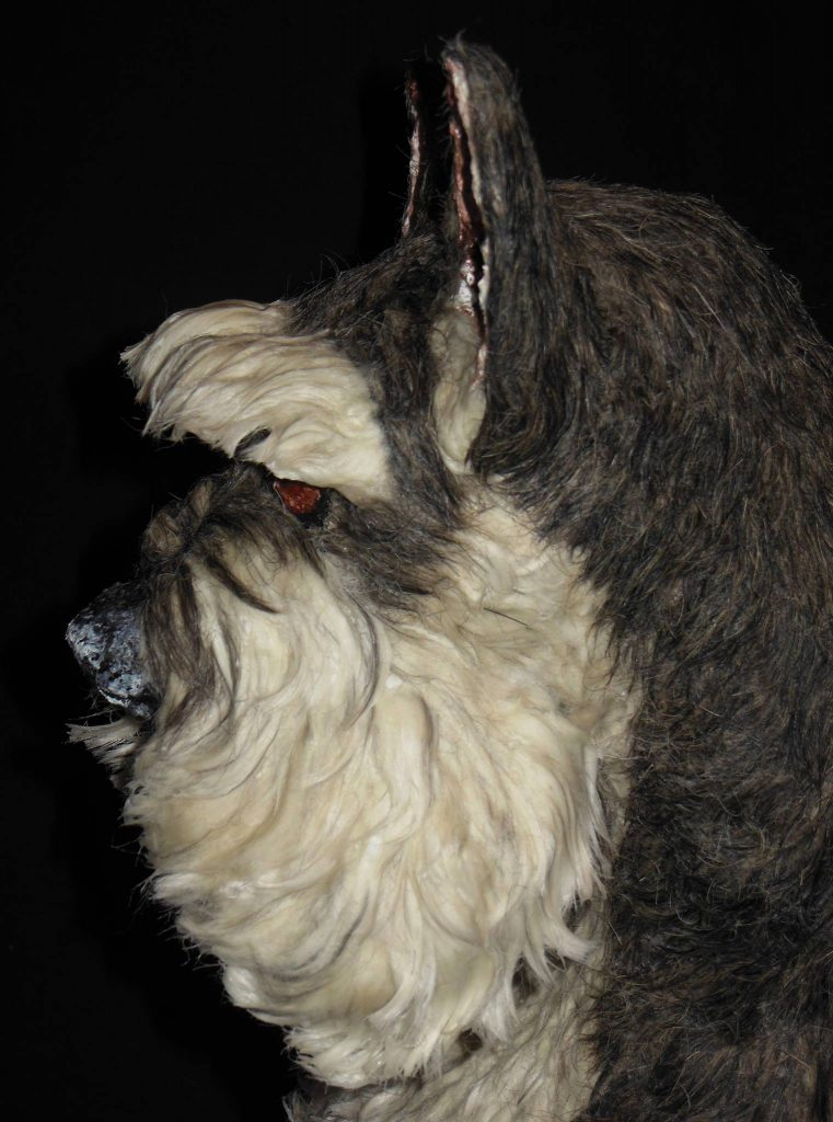 Schnauzer sculpture with real dog hair side view