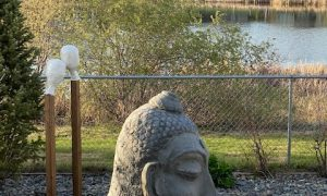 Backyard-Sculptures
