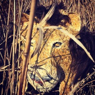 Paper mache lion head by Linda Hameeteman