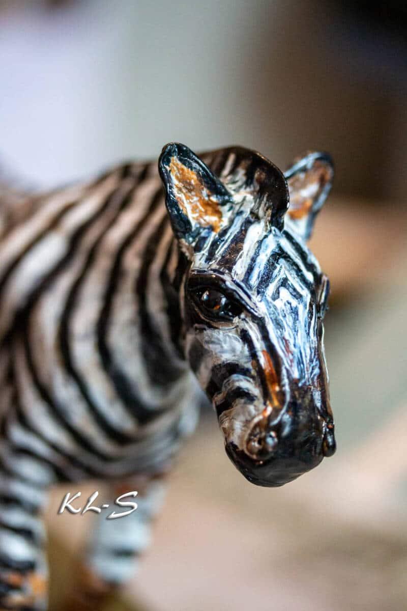 Stripe - stripe - stripe zebra world