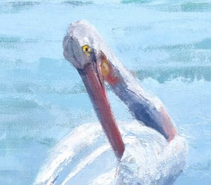 Pelican painted in oils by Jessie Rasche